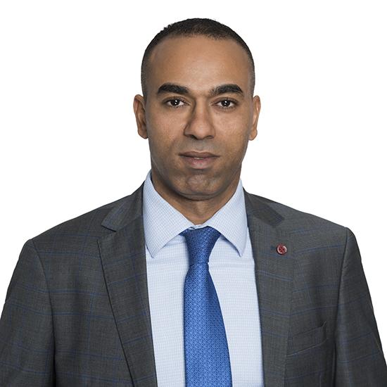 Mahmoud Loutfi