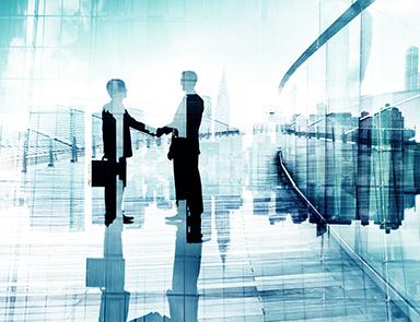 Sole Establishments: Issues Surrounding the Succession Process